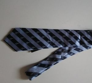 Country road blue men's novelty Striped Tie
